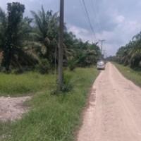 [bss medan] 1d. tanah luas 19.848 m2 di Desa Sungai Sentang Kec. Kualuh Hilir Kab. Labuhanbatu SumUt
