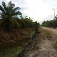 [bss medan] 1e. tanah luas 23.299 m2 di Desa Sungai Sentang Kec. Kualuh Hilir Kab. Labuhanbatu SumUt