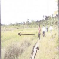 [MANDIRI] Satu bidang tanah dengan luas 220 m2 berikut bangunan sesuai SHM 01177 di Kabupaten Nabire