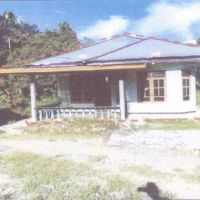 [MANDIRI] Satu bidang tanah dengan luas 1.250 m2 berikut bangunan sesuai SHM 981 di Kabupaten Nabire