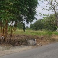 Sebidang tanah SHM No. 117 luas 2.015 m2 terletak di Desa Dermolemahbang, Kec. Sarirejo, Kab. Lamongan (KSU Central Artha Niaga)