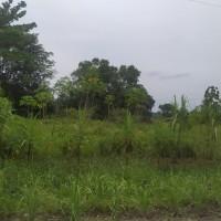 4. 2 bidang tanah kosong berikut segala sesuatu yang melekat di atasnya, di desa stabat lama kabupaten Langkat