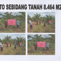 KEJARI SEKADAU 4 : 1 (satu) bidang Tanah dengan luas +- 8.464 m2 di RT 01 Riok Ds. Tanjung Kec. Sekadau Hilir Kab. Sekadau