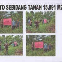KEJARI SEKADAU 5 : 1 (satu) bidang Tanah dengan luas +- 15.991 m2 di RT 01 Riok Ds. Tanjung Kec. Sekadau Hilir Kab. Sekadau