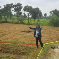 Sebidang tanah pertanian SHM No. 580 luas 11.722 m2 terletak di Desa Panunggalan, Kec. Sugihwaras, Kab. Bojonegoro (PNM Bojonegoro)