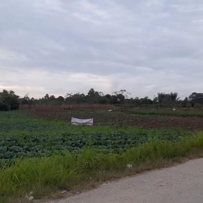 BRI Sidikalang, Bidang tanah sesuai SHM  No.24 seluas 14.858 M2 di Desa Parbuluan VI Kec.Parbuluan Kab Dairi Propinsi SUMUT ,
